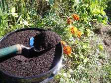 What are the disadvantages of artificial fertilizers?
